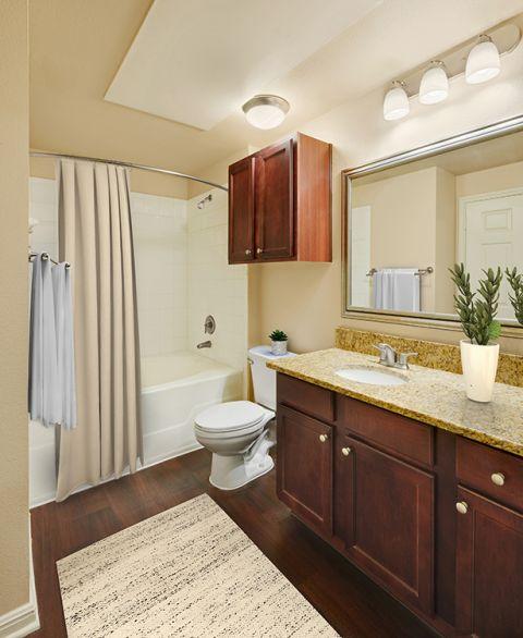 Main bathroom at Camden Brushy Creek Apartments in Cedar Park, TX