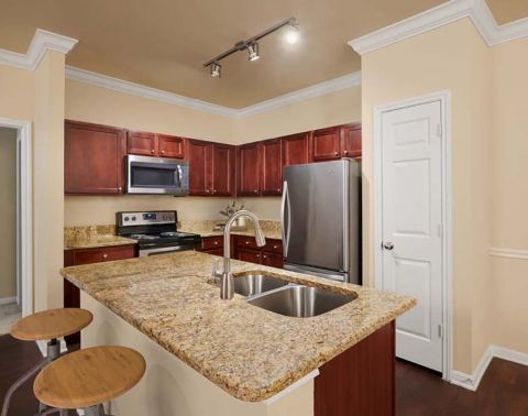 Kitchen at Camden Brushy Creek Apartments in Cedar Park, TX