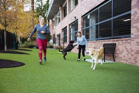 Dog park at Camden Buckhead Square Apartments in Atlanta, GA