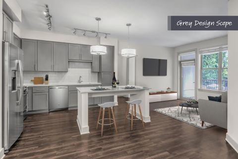 Kitchen with grey design scope and living room at Camden Carolinian in Raleigh North Carolina