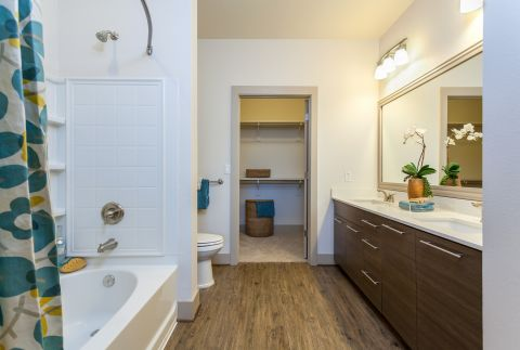Master Bathroom at Camden Chandler Apartments in Chandler, AZ