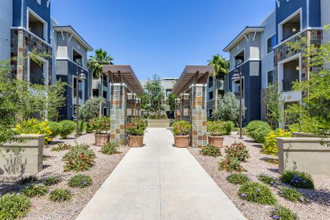 Landscaped walkways at Camden Chandler Apartments