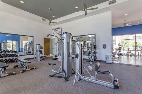 Fitness Center with Weight Machines at Camden Chandler Apartments in Chandler, AZ