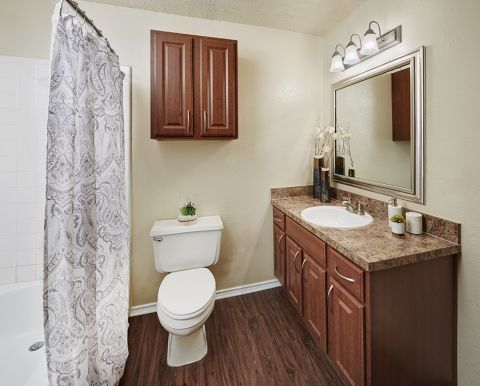 Bathroom at Camden Cimarron Apartments in Irving, TX