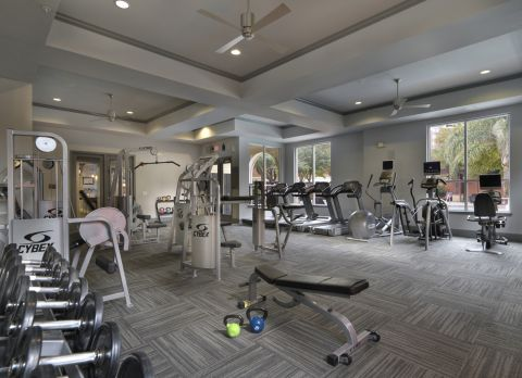 Fitness Center with Cardio and Free Weights at Camden City Centre Apartments in Houston, TX