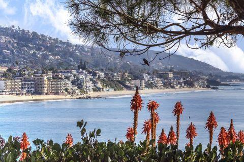 Laguna Beach Views at Camden Crown Valley Apartments in Mission Viejo, CA
