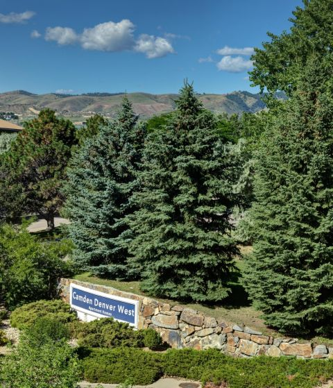 Evergreens surrounding Monument Sign at Camden Denver West Apartments in Golden, CO