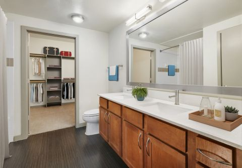 Bathroom and Large Walk-In Closet at Camden Design District Apartments in Dallas, TX