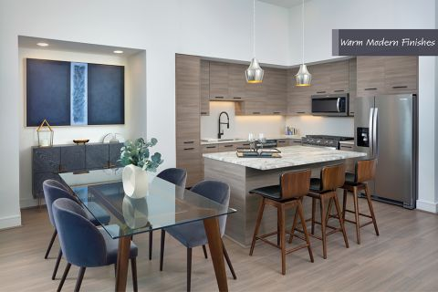 Kitchen in Warm Modern Finish Scheme at Camden Downtown Houston Apartments in Houston, Texas