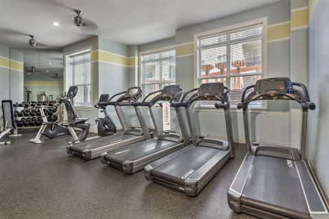 Fitness Center at Camden Dulles Station Apartments in Herndon, VA