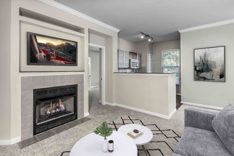 Living Room with Fireplace Kitchen at Camden Fallsgrove Apartments in Rockville, MD