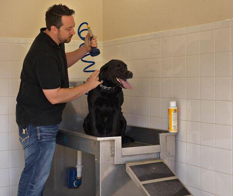 Dog Washing Station at Camden Flatirons Apartments in Interlocken, CO