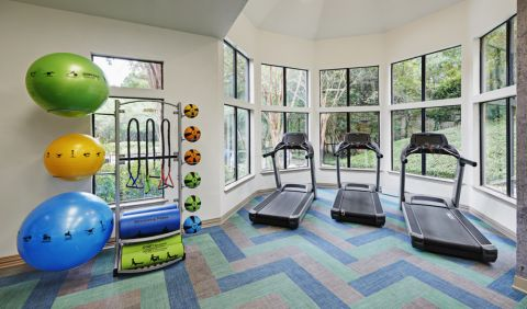 Fitness Center with cardio and free weights at Camden Gaines Ranch Apartments in Austin, TX