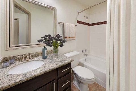 Bathroom at Camden Gaines Ranch Apartments in Austin, TX