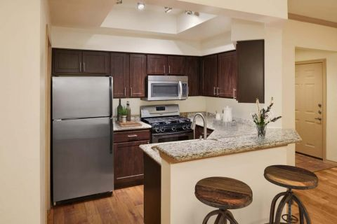 Kitchen with Stainless Steel Appliances at Camden Gaines Ranch Apartments in Austin, TX