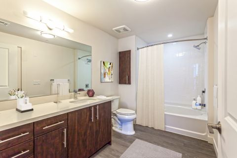 2 Bedroom Penthouse Apartment Bathroom at Camden Glendale Apartments in Glendale, CA