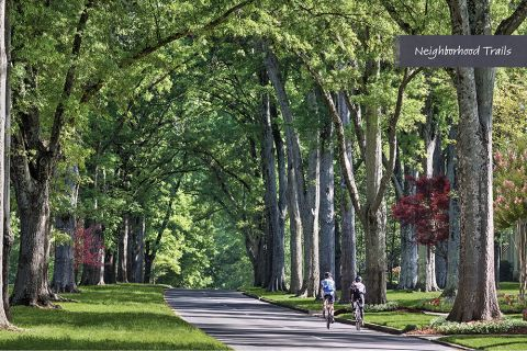 Outdoor recreation near Camden Grandview Apartments and Townhomes in Charlotte, NC