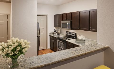 Kitchen at Camden Greenway Apartments in Houston, TX