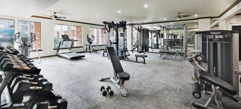 Fitness Center with cardio machines and free weights at Camden Heights Apartments in Houston, TX