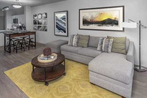 Living Room at Camden Highlands Ridge Apartments in Highlands Ranch, CO