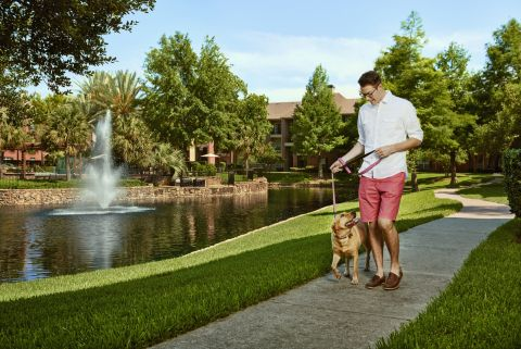 Private Lake and Walking Trail at Camden Holly Springs Apartments in Houston, TX