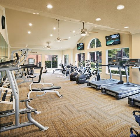 Fitness Center with Cardio and Free Weights at Camden Holly Springs Apartments in Houston, TX