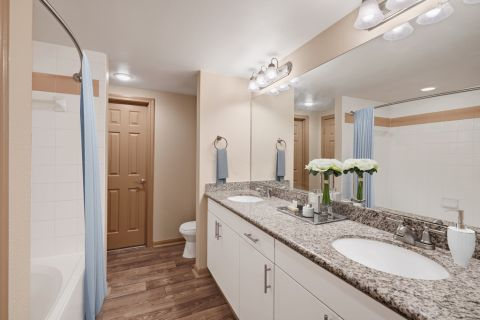 Double Vanity Bathroom at Camden Holly Springs Apartments in Houston, TX