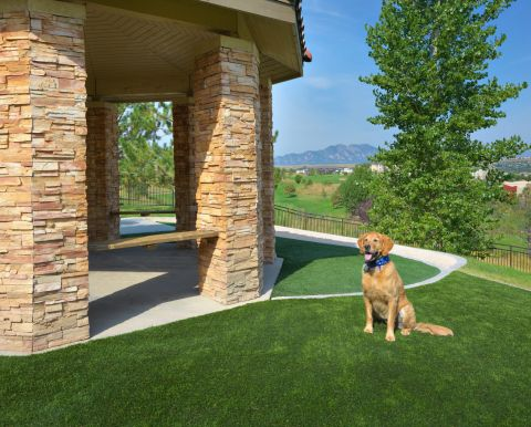 Dog Park with Gazebo at Camden Interlocken Apartments in Broomfield, CO