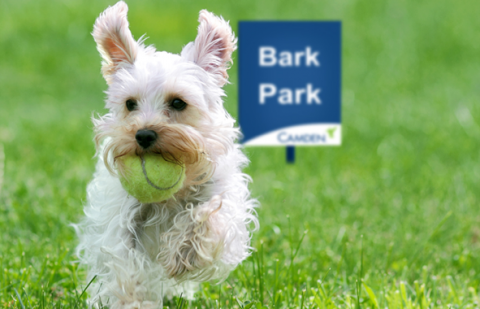 Dog Park at Camden La Frontera Apartments in Round Rock, TX