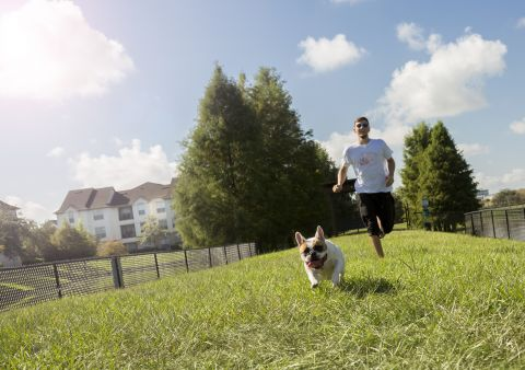 Dog Park at Camden Lago Vista Apartments in Orlando, FL