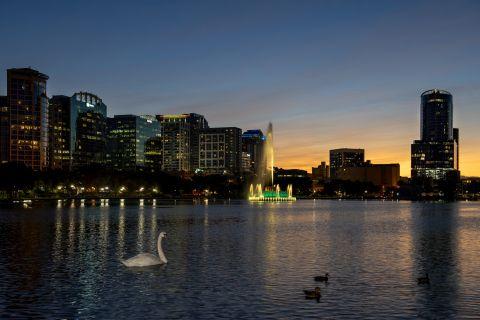 Dusk swan near Camden Lake Eola Apartments in Downtown Orlando, Florida