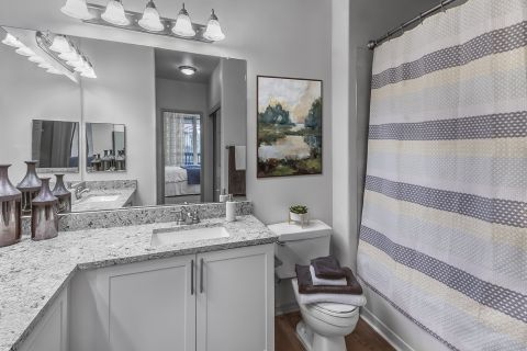 Bathroom at Camden Lakeway Apartments in Lakewood, CO
