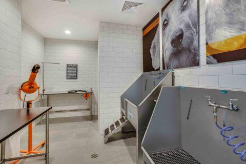 Brand New Pet Spa at Camden Lansdowne Apartments in Lansdowne, VA