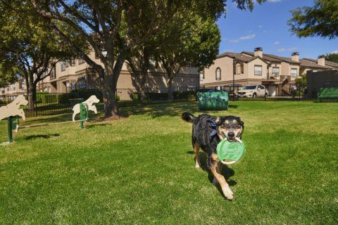 Dog park at Camden Legacy apartments in Plano, TX