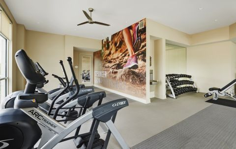 Fitness with Cardio Equipment at Camden Lincoln Station Apartments in Lone Tree, CO