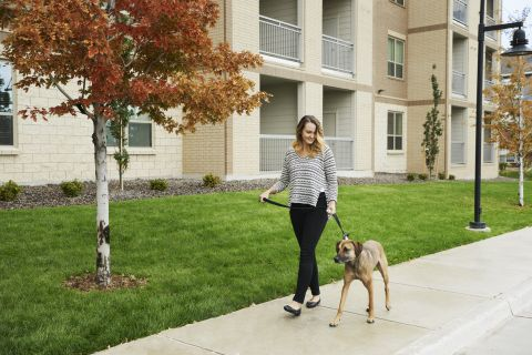 Pet-Friendly Community with Pet Stations at Camden Lincoln Station Apartments in Lone Tree, CO