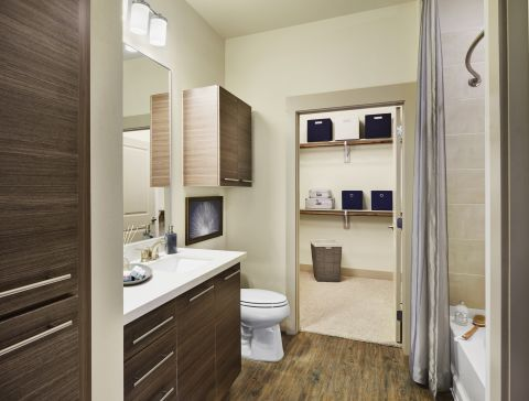 Bathroom with Single Vanity Sink and Large Soaking Tub at Camden Lincoln Station Apartments in Lone Tree, CO