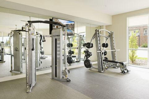 Fitness Center with Weights and Cardio Equipment at Camden Lincoln Station Apartments in Lone Tree, CO