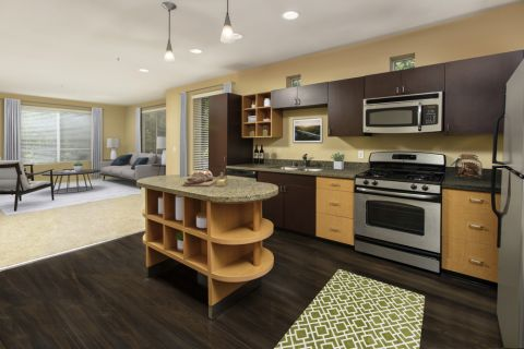 Kitchen and Living Area at Camden Main and Jamboree Apartments in Irvine, CA
