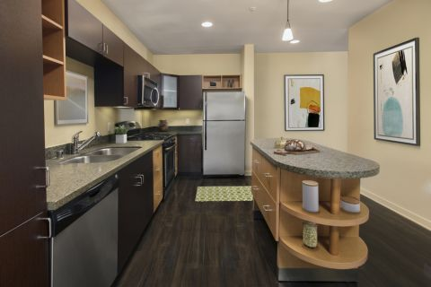 Kitchen at Camden Main and Jamboree Apartments in Irvine, CA