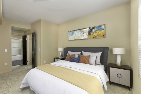 Bedroom and Bath at Camden Main and Jamboree Apartments in Irvine, CA