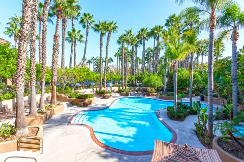 Pool at Camden Martinique Apartments in Costa Mesa, CA