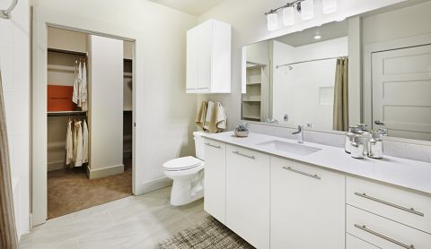 Bathroom with Walk-In Closet at Camden McGowen Station Apartments in Houston, TX
