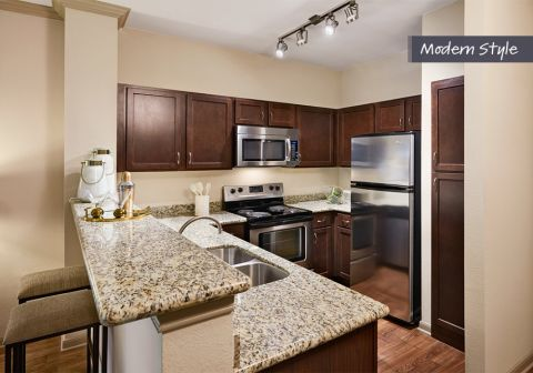Modern Style Kitchen with Stainless Steel Appliances at Camden Midtown Houston Apartments in Houston, TX