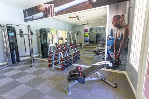 Fitness Center with Cardio Equipment, Weight Training and Free Weights at Camden Montierra Apartments in Scottsdale, AZ