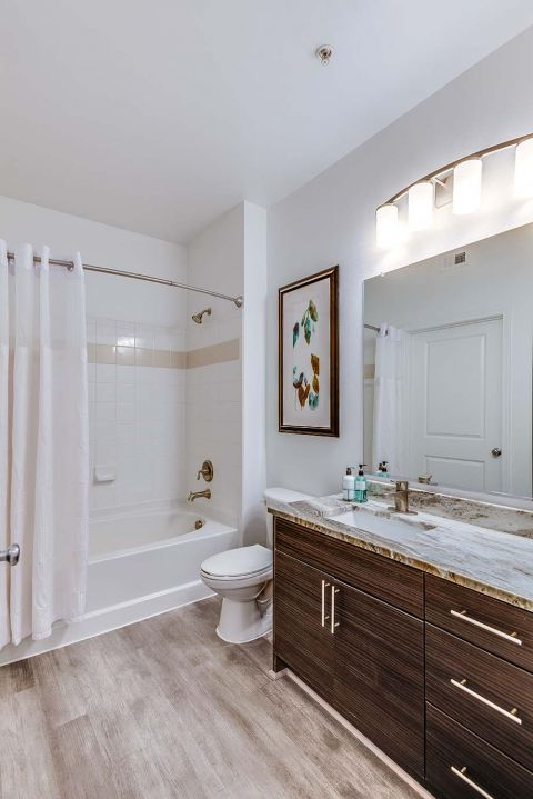 Newly Renovated Bathroom with Granite Counters and Soaking Tub at Camden Monument Place Apartments in Fairfax, VA