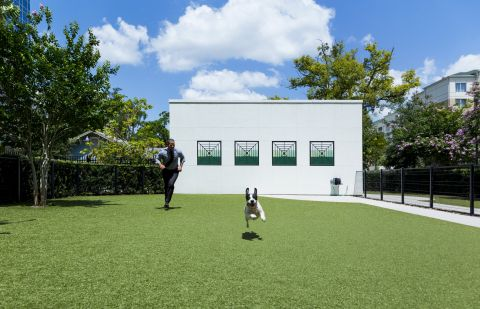 Dog Park at Camden North Quarter Apartments in Orlando, Florida