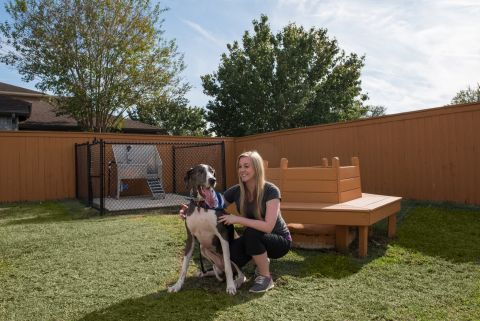 Dog Wash Station at Camden Northpointe Apartments in Tomball, TX