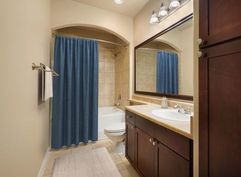 Bathroom at Camden Northpointe Apartments in Tomball, TX