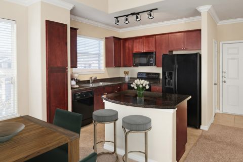 Kitchen at Camden Northpointe Apartments in Tomball, TX